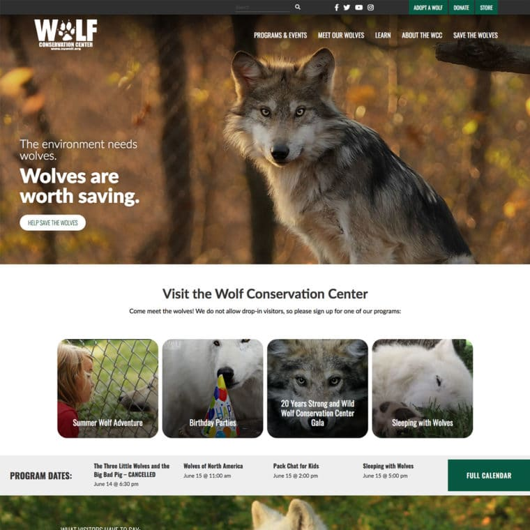 Nywolf Home New